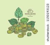 mung beans  leaf  plant  pod... | Shutterstock .eps vector #1150193123
