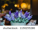 soft focus colorful wild... | Shutterstock . vector #1150255280