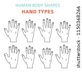human body shapes. hand types... | Shutterstock .eps vector #1150368266