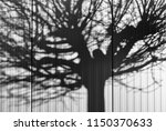 shadows on the wall. | Shutterstock . vector #1150370633