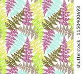 fern frond herbs  tropical... | Shutterstock .eps vector #1150400693