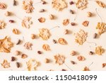 autumn composition. pattern... | Shutterstock . vector #1150418099