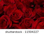 Stock photo red roses background low dof 11504227