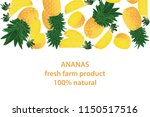 vector illustration of ananas... | Shutterstock .eps vector #1150517516