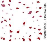 abstract flower petals confetti ... | Shutterstock .eps vector #1150562636