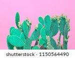 trendy tropical neon cactus... | Shutterstock . vector #1150564490