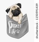 Stock vector cute pug in shirt pocket illustration 1150591439