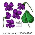 violet flower drawing. vector... | Shutterstock .eps vector #1150669760