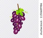 red table grapes  wine grapes.... | Shutterstock .eps vector #1150689986