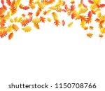 oak  maple  wild ash rowan... | Shutterstock .eps vector #1150708766