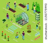 greenhouse isometric flowchart... | Shutterstock .eps vector #1150775993