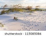 Footprints In The Sand At...
