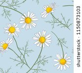 daisy flowers with twigs on a... | Shutterstock .eps vector #1150873103