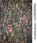 bark texture background.   Shutterstock . vector #1150898900