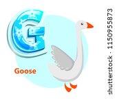 letter g for goose cartoon...   Shutterstock .eps vector #1150955873