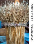 spikelets of wheat bunch on... | Shutterstock . vector #1151162009