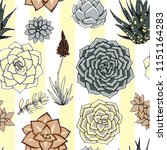 vector succulents seamless... | Shutterstock .eps vector #1151164283