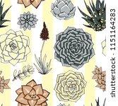 vector succulents seamless... | Shutterstock .eps vector #1151164283