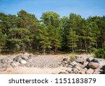 baltic sea shore in latvia.... | Shutterstock . vector #1151183879