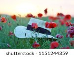 beautiful red poppies flowers... | Shutterstock . vector #1151244359