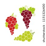 wine grapes. isolated grapes on ... | Shutterstock .eps vector #1151326400