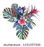 tropical plant. watercolor... | Shutterstock . vector #1151357330