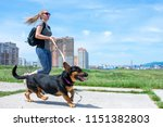 girl running with a dog .... | Shutterstock . vector #1151382803