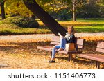 autumn sunny day afternoon in... | Shutterstock . vector #1151406773