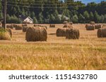 a hay in the field. before... | Shutterstock . vector #1151432780