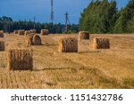 a hay in the field. before... | Shutterstock . vector #1151432786