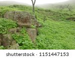 eroded rocks in the middle of... | Shutterstock . vector #1151447153
