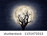 moon over dry tree silhouette.... | Shutterstock . vector #1151473313