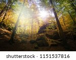 meditation in soft light in the ... | Shutterstock . vector #1151537816