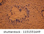 fairy circles on namib desert | Shutterstock . vector #1151551649
