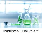 flask of water green solution... | Shutterstock . vector #1151693579