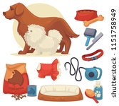 set of accessories for dogs. | Shutterstock . vector #1151758949