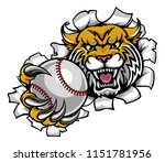 a wildcat angry animal sports... | Shutterstock .eps vector #1151781956