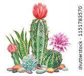 Watercolor With Cactus Garden....