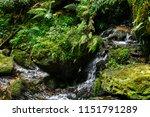 yspertal  in the austria alps   Shutterstock . vector #1151791289