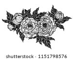 peony flower with leaves and... | Shutterstock .eps vector #1151798576