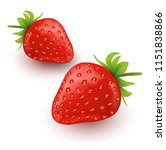 strawberry fruit illustrations. ... | Shutterstock .eps vector #1151838866