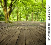 forest trees. nature green wood ... | Shutterstock . vector #115184734