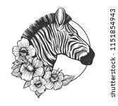 zebra head animal engraving... | Shutterstock .eps vector #1151854943