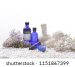 composition of spa setting n... | Shutterstock . vector #1151867399