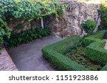 beautiful old garden with... | Shutterstock . vector #1151923886