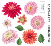 Red Asters Flowers Set....