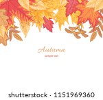 composition of multicolor... | Shutterstock .eps vector #1151969360