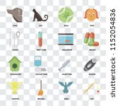 set of 16 icons such as toy ... | Shutterstock .eps vector #1152054836