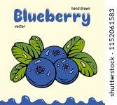blueberry vector illustration ... | Shutterstock .eps vector #1152061583