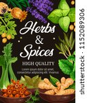 spices and herbs poster of... | Shutterstock .eps vector #1152089306